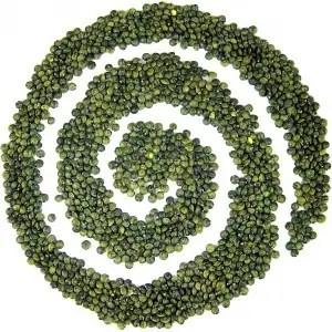temps de cuisson lentille verte, temps de cuisson des lentilles verte, temps de cuisson des lentilles verte a l'eau