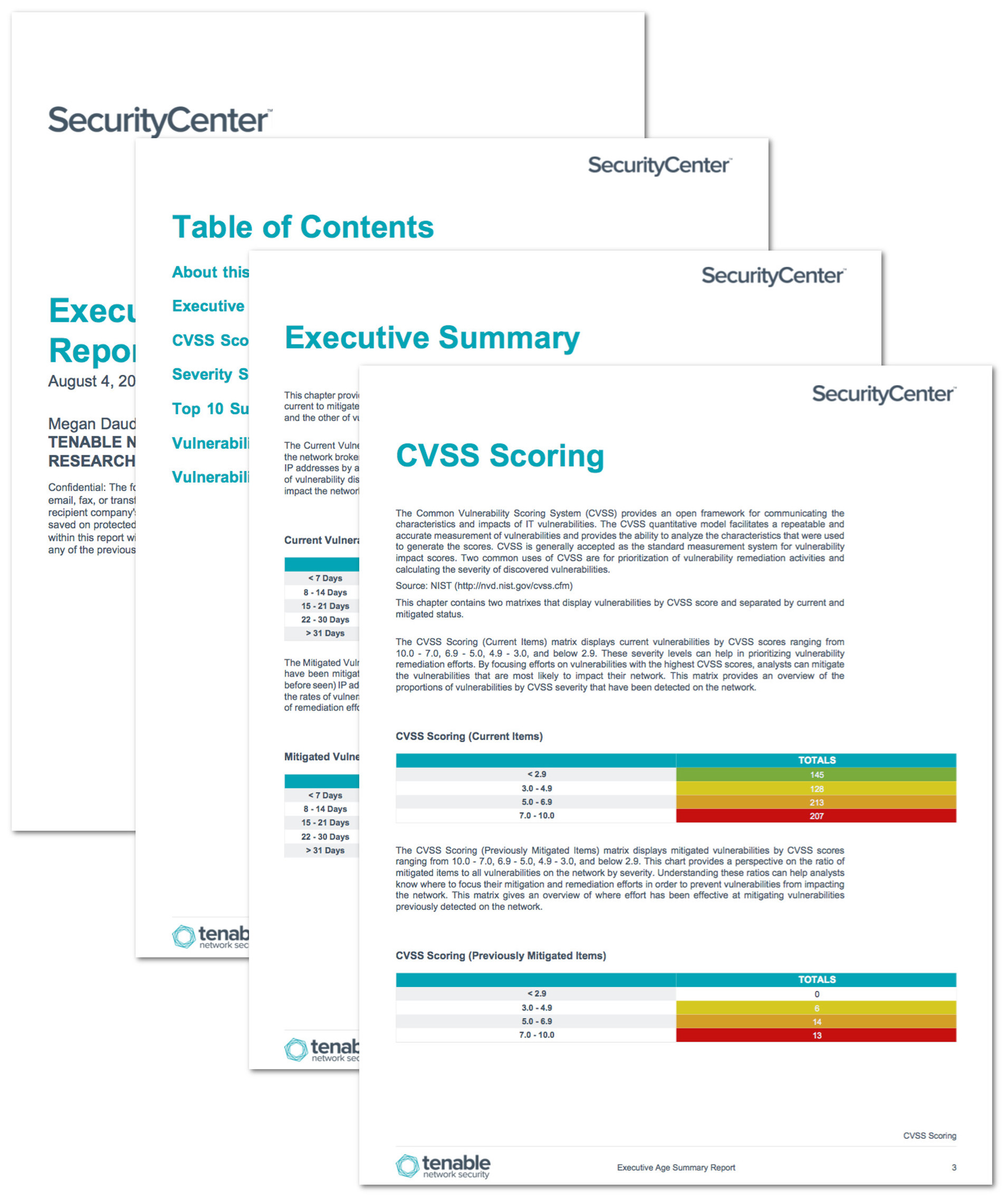 Information Security Standards Template
