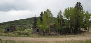 cabin and out building