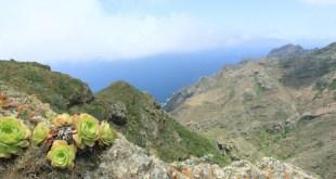 Landschaft des Anaga-Gebirge Teneriffa