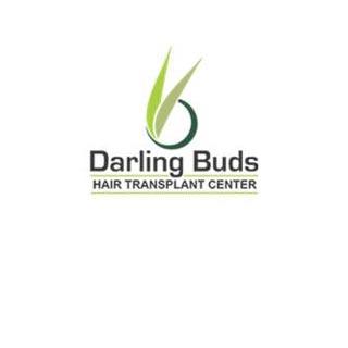 Darling Buds Hair Transplant Center