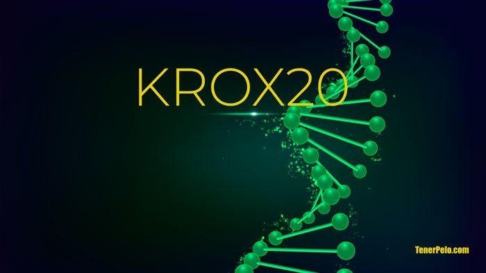 KROX20