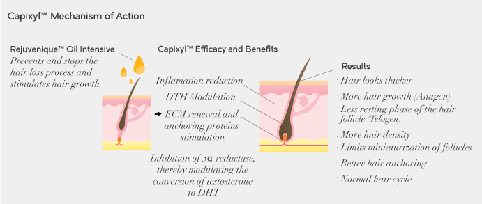 Mecanismo de acción de Capixyl