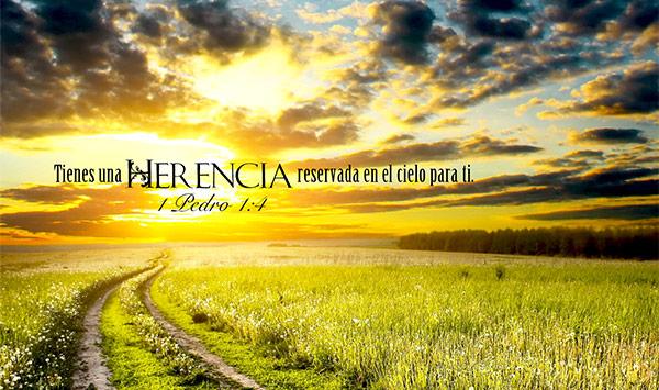 El camino de la fe | Día 3