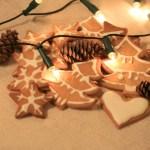 Tavo Kalėdos. Agnės Kalėdų istorija