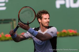 Andy Murray fh