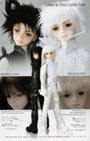 Lucas-blackcat14