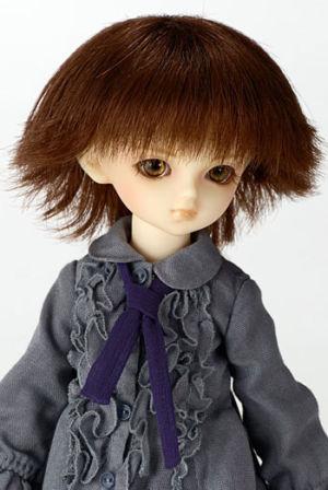 Shinn-dolpa2006
