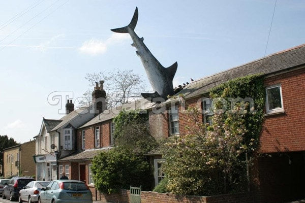 the-headington-shark-england