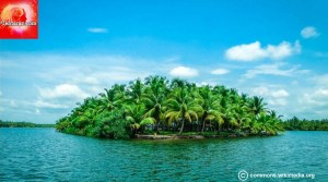 Kerala : Tourist Attractions and Things to do in Alleppey
