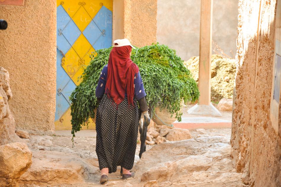 Au Maroc la ville de Tata