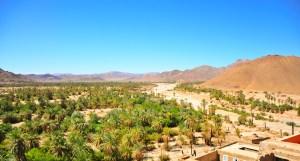 La palmeraie de Tata Maroc