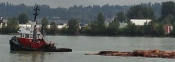 Small but mighty tugs ply the working river.