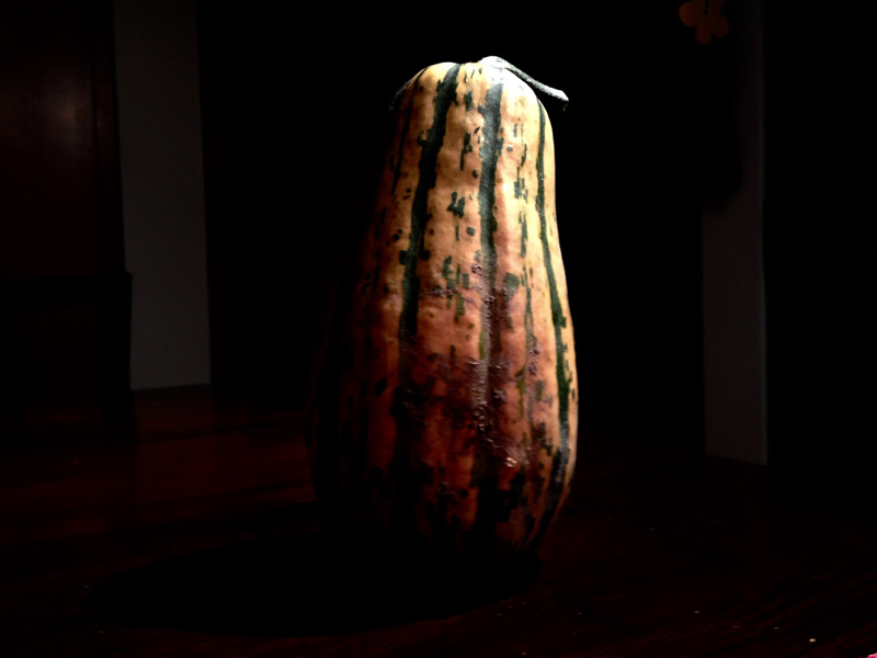 What oh what to do with a delicata squash???