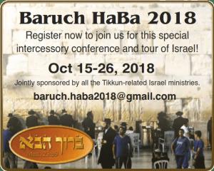 2018 Baruch Haba
