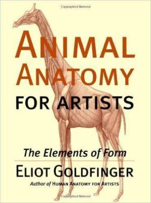 Anatomia animal 2