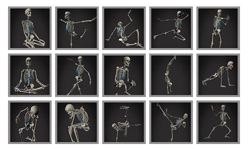 Anatomía humana para artistas-Skelly-App-Pose-Library