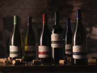 Our own-production Wines