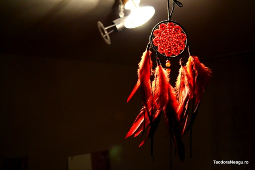 Lizknot Dreamcatchers (13)