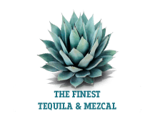 teqfest_london_button_tequila_mezcal