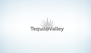 Tequila Valley - Grís