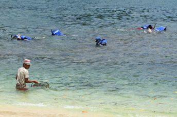 Relawan membersihkan sampah daun yang ada di pantai dengan latar belakan wisatawan yang bersnorkeling di pantai Tiga Warna, Sendang Biru Malang, Jawa Timur (27/10). Agar tidak merusak terumbu karang, wisatawan yang akan berenang di wajibkan mengenakan pelampung. Terakota.id/Aris Hidayat