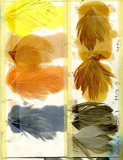 feather-swatches_GA