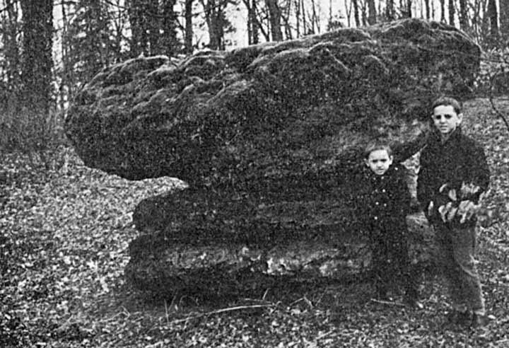 """Résultat de recherche d'images pour """"La Pierre Croûte dans le parc du château de Bellignies."""""""
