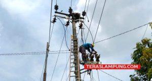Petugas PLN ULP Sidomulyo sedang melakukan perbaikan pengoperasian jaringan baru dan pemeliharaan jaringan kelistrikan di wilayah Desa Kota Dalam, Kecamatan Sidomulyo, Lampung Selatan, Rabu (22/4/2020). Foto: Teraslampung.com/Zainal Asikin