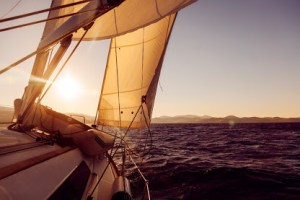 CFO navigating sea of change