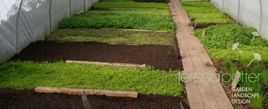 Teresa Potter Garden & Landscape Design - Northcote Manor Organic Gardens