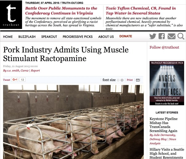 pork-industry-admits-to-using-ractopamine