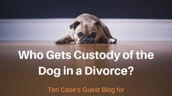 Who gets the dog? Teri Case