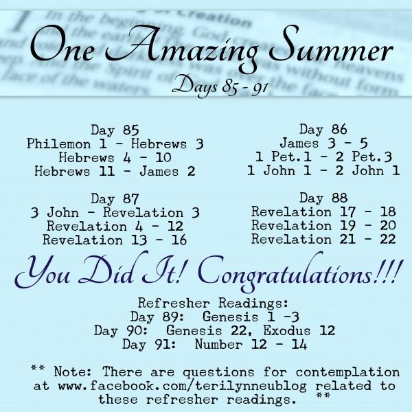 Bible in 90 Days Readings www.terilynneunderwood.com