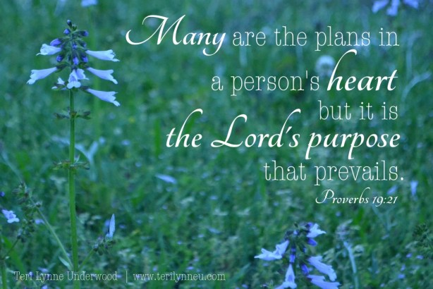 trusting the Lord's purpose Proverbs 19: 21 www.terilynneunderwood.com