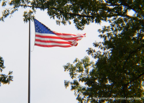 American Flag || Shiloh Battlefield || www.teriynneunderwood.com/blog