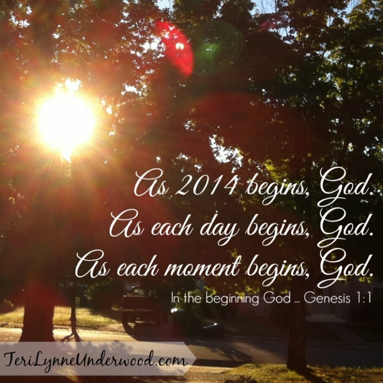 what is your desire for 2014? || TeriLynneUnderwood.com