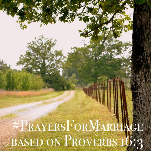 31 Verses to Pray for Your Marriage || Proverbs 16:3