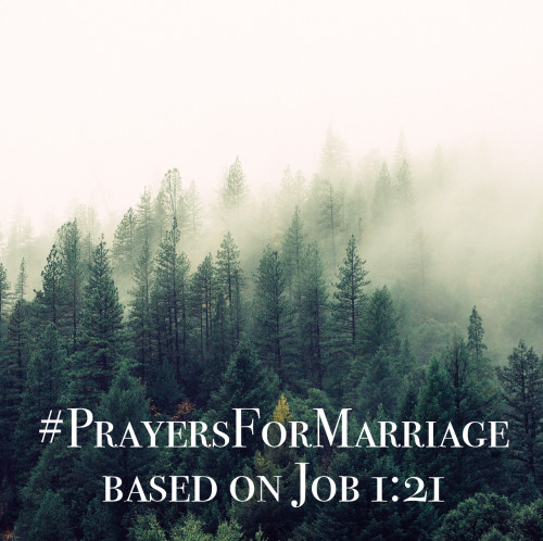 31 Verses to Pray for Your Marriage || Job 1:21