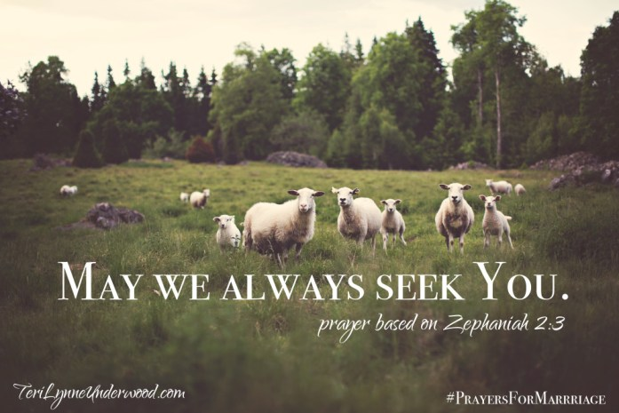 31 Verses to Pray for Your Marriage || Zephaniah 2:3