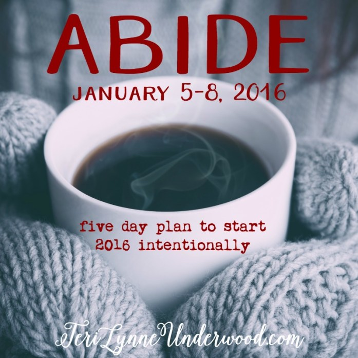 ABIDE: five day plan to start 2016 intentionally