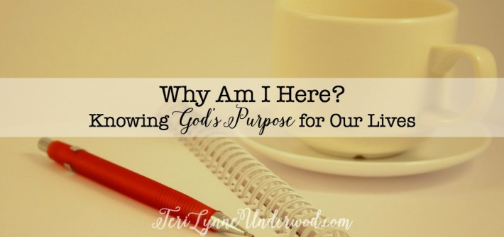 How can we know God's purpose for our lives? Can we really live in His purpose during the chaotic season of raising children? Is it possible for us to glorify Him even when our lives are totally busy? I believe the answer to all those questions is a huge YES! But I believe it has to start with knowing what our purpose really is.