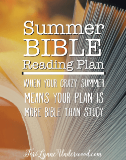 When your crazy summer means your plan is more Bible than study