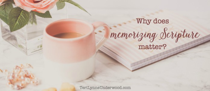 Why do we need to memorize Scripture? Here are 3 great reasons AND an awesome resource!