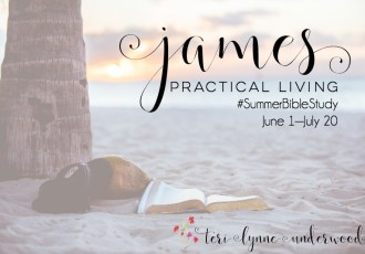 Looking for a #SummerBibleStudy? How about James?