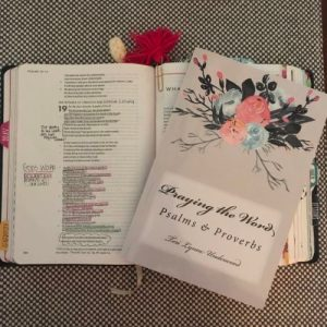 Praying the Word: Psalms and Proverbs ... a prayer journal/BIble study guide by Teri Lynne Underwood. Use the READ*REFLECT* RESPOND method to engage with Scripture and formulate your prayers.
