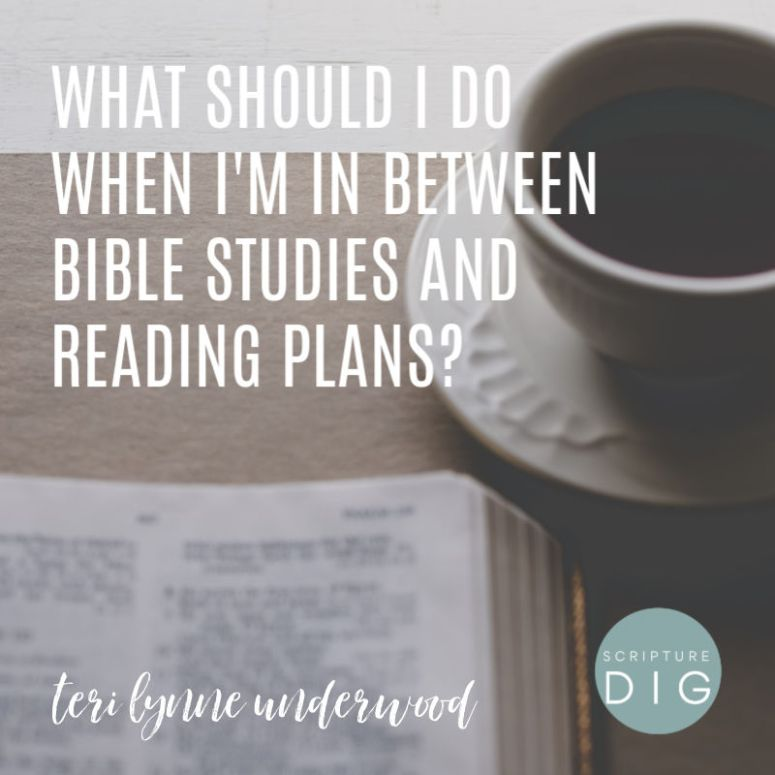What should I do when I'm in between Bible studies or reading plans? Here are five suggestions for ways to stay engaged with the Word but also give yourself time and space to process what you've just studied.