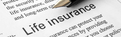 Term life insurance best rates