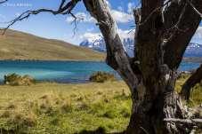 Laguna Azul e ao fundo as famosas Torres