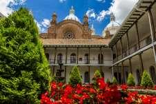 Belas flores e, ao fundo, a Catedral